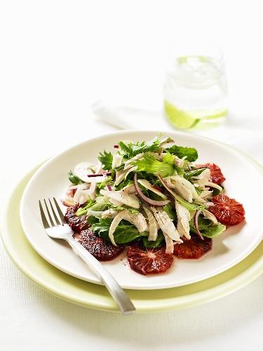 Insalata catanese (blood orange, fennel and chicken salad)
