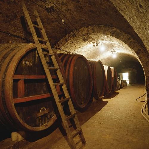 Wine cellar of Bàtaapàti Estate, Tolna, Hungary