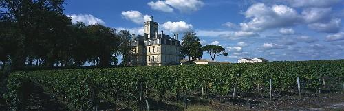 Château Larose-Trintaudon, Haut-Médoc, Médoc, Bordeaux, Frankreich