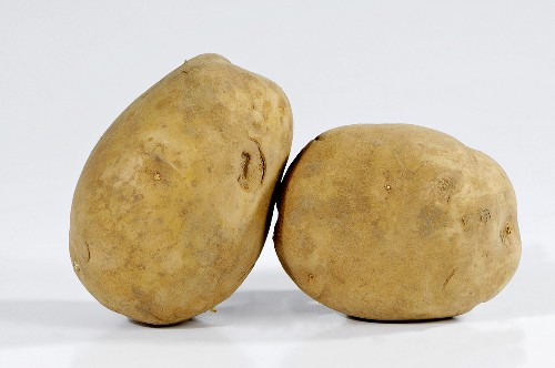 Two potatoes (variety 'Auralia')