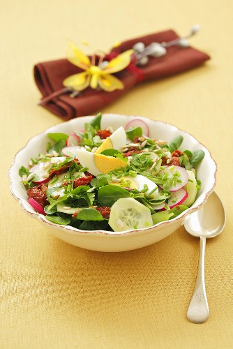 Mixed salad leaves with cucumber, egg and dried tomatoes