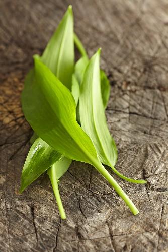 Fresh ramsons (wild garlic) leaves