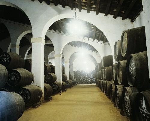 Wine cellar of Gonzalez Byass, Jerez de la Frontera, Spain