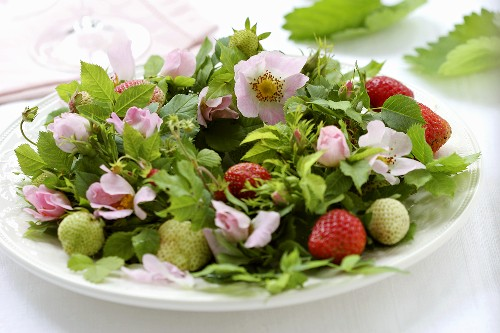 Wreath of dog roses and strawberries on a plate