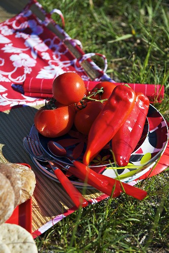 Tomatoes, peppers, cutlery and plates on a picnic rug