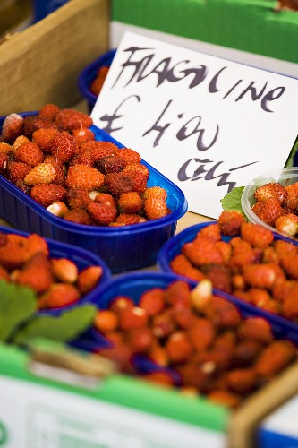 Alpine strawberries on a market stall in Italy