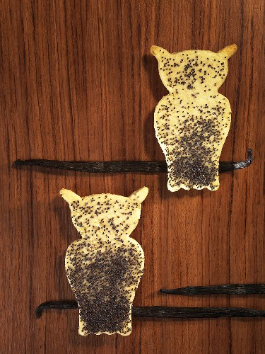 Two owl-shaped vanilla biscuits with poppy seeds