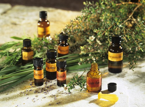 Tea tree oil and several other essential oils in small bottles