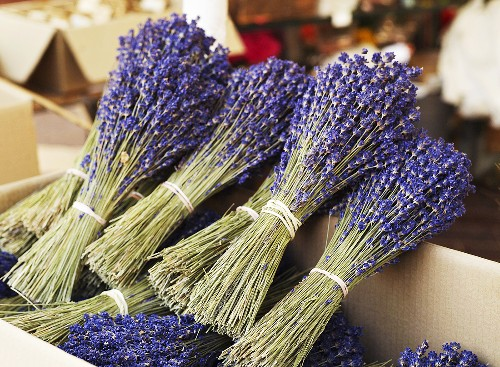 Bunches of dried lavender from Provence in a box