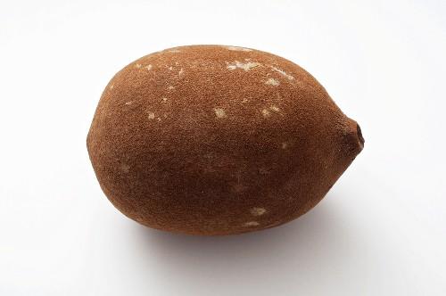 Cupuacu-Frucht (Theombra grandiflorum, Großblütiger Kakao)