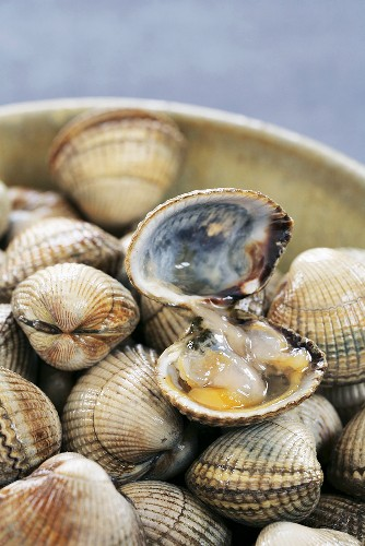 Cockles, one opened, in bowl