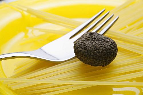 Black truffle (Chinese truffle) and fork on spaghetti