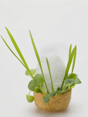 Quark ice cream with fresh herbs in edible bowl