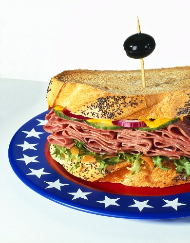Pastrami sandwich in poppy seed toast on plate with US colours