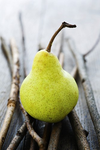 A pear on twigs