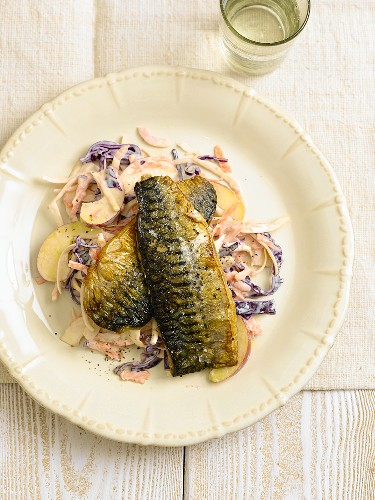 Fried mackerel with apple red cabbage