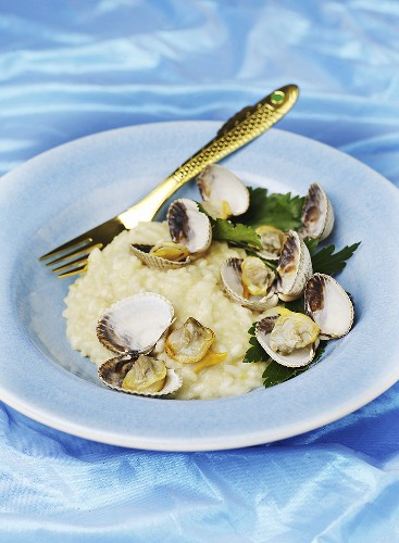 Risotto with Venus mussels