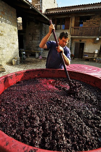 A man stirring the mash in the yard of the Ren cel vineyard, Slovenia