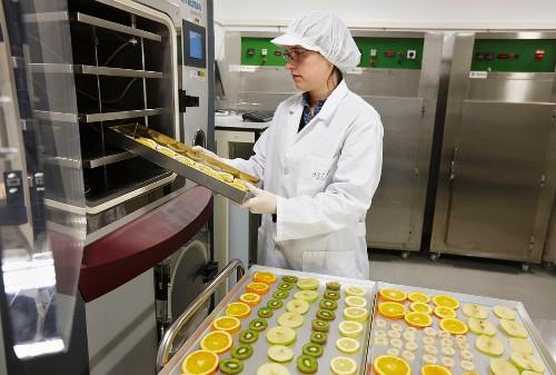 Food technician flash freezing fruit