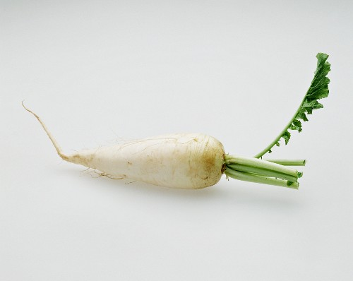A Single White Radish