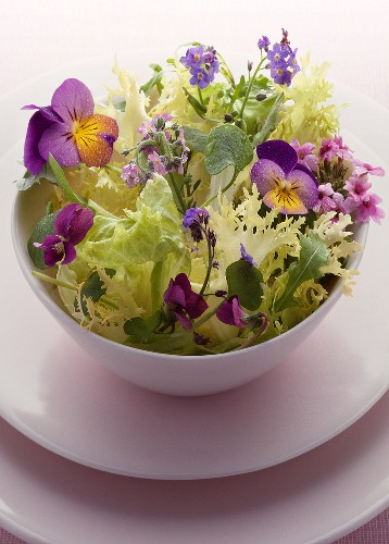 Lettuce and flower salad