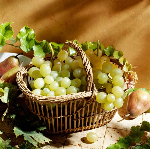 Basket of grapes and pears