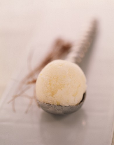 Scoop of melon-coconut-jasmin ice cream