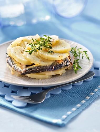 Potato and sardine Mille-feuille