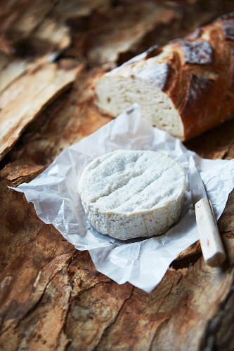 Camembert in it's paper, knife and bread