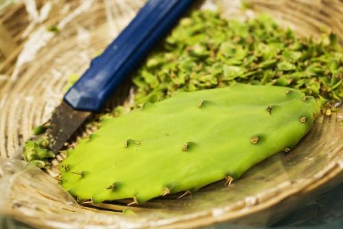 Stacheln von einem Kaktusblatt entfernen