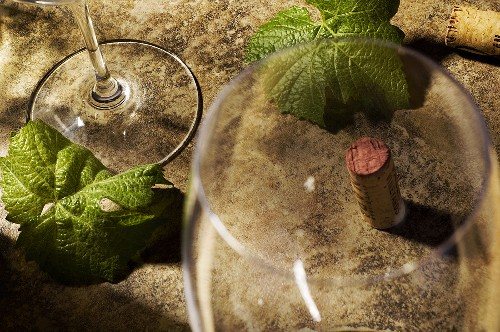 Empty Wine Glasses with Cork and Leaves