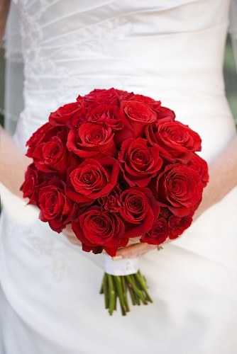 Bride Holding a Bouquet of Red Roses