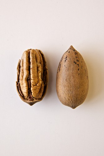 Pecan with Shell Cracked Open; Whole Pecan