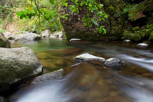 Hawaii, Maui, Iao River Valley.