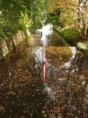 Rowing boat on a canal in Hamburg, Hanseatic City of Hamburg, Germany