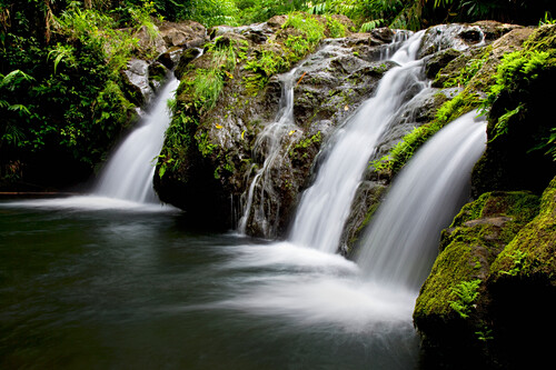 Hawaii, Maui, Kipahulu, Hahalawe Falls in lush Kipahulu