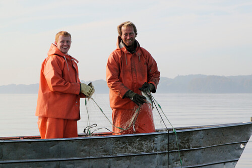 Inland fishermen on Lake Ploen in the morning, Ploen, Ostholstein, Schleswig-Holstein, Germany