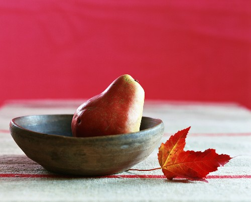 A bowl with a pear and an oak leaf