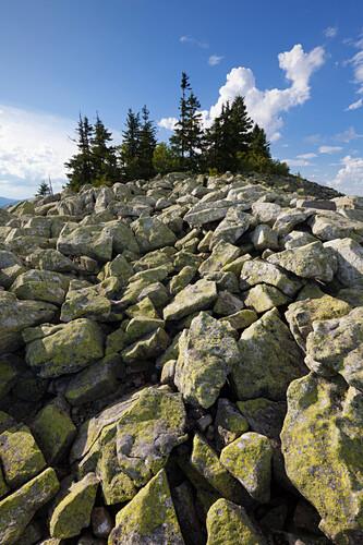Granit-Blockmeer am Gipfel des Lusen, Bayrischer Wald, Bayern, Deutschland