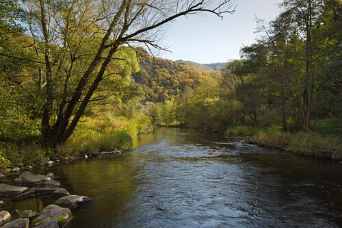 Felslandschaft der Ahr, im Langfigtal, Altenahr, Ahrsteig, Ahr, Rheinland-Pfalz, Deutschland