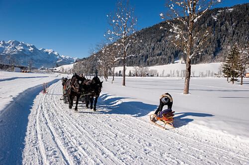 Pferdeschlitten, Schnee, Winter, Skigebiet, Werfenweng, Österreich, Alpen, Europa