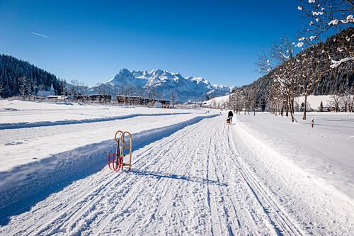 Schlitten, Schnee, Winter, Skigebiet, Werfenweng, Österreich, Alpen, Europa