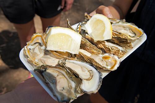 Frische Austern auf dem Prongurup Wine Festival, Porongurup, Westaustralien, Australien