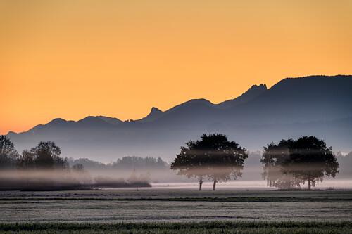 Morning mood above moor in Bad Feilnbach, Chiemgau Alps in background, Bad Feilnbach, Upper Bavaria, Bavaria, Germany