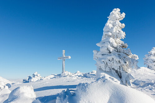 Snow covered summit and cross, winter trees, Chiemgau, Bavaria, Germany