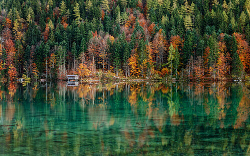 Little hut at a lake during autumn, reflection of colorful trees in the crystal-clear water, lake Hinterstein, Scheffau, Tyrol, Austria