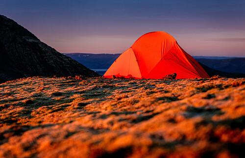 Orangenes Zelt bei Sonnenaufgang auf einem moosigen Bergrücken auf Island, Hofn, Vesturland, Island