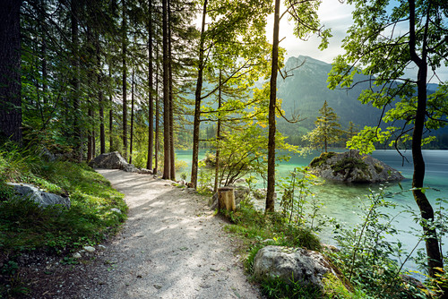 Path on Hintersee with a view of the Hochkalter, Ramsau, Berchtesgaden National Park, Berchtesgadener Land, Upper Bavaria, Bavaria, Germany, Europe