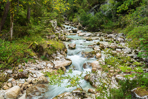 Ramsauer Ache in the so-called magic forest, Ramsau, Berchtesgaden National Park, Berchtesgadener Land, Upper Bavaria, Bavaria, Germany, Europe