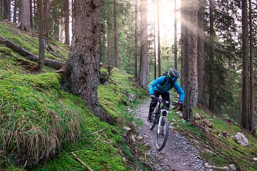 Mountainbiken am Forest Two Singletrail im Bikepark Lermoos, Österreich